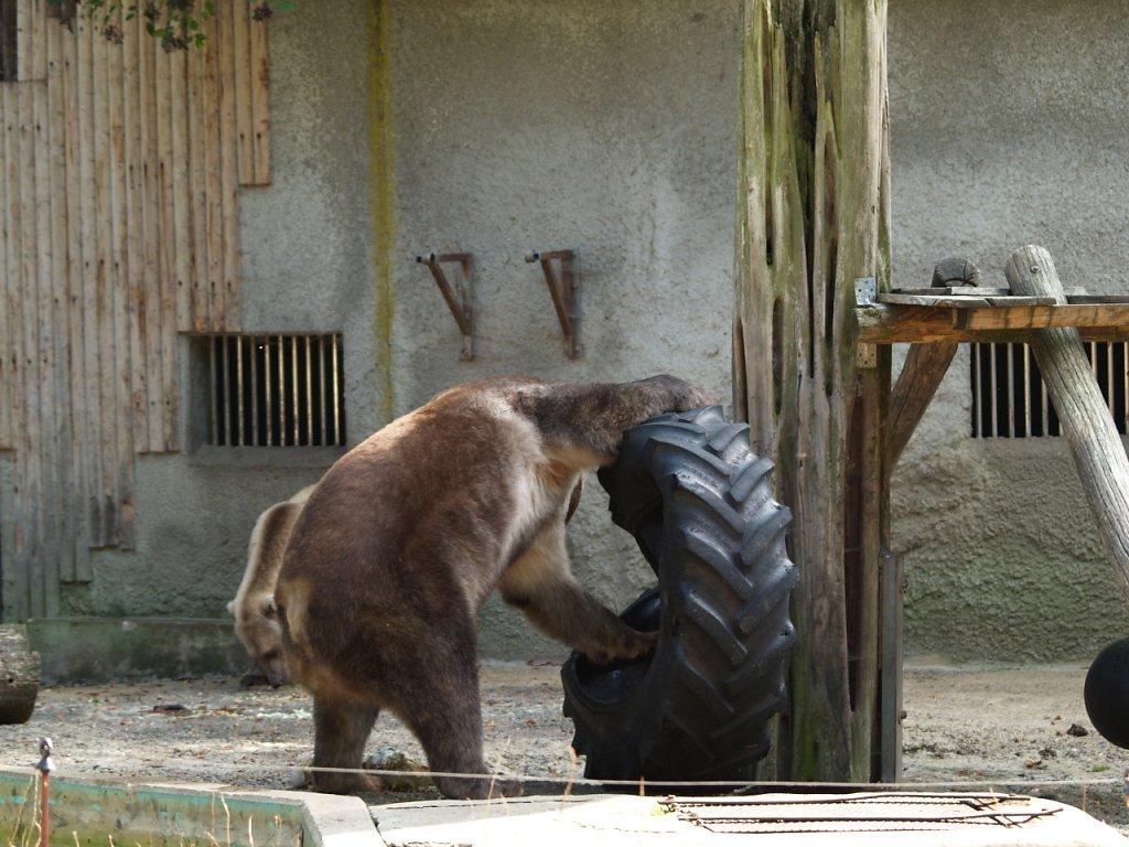 zoo__292_.JPG
